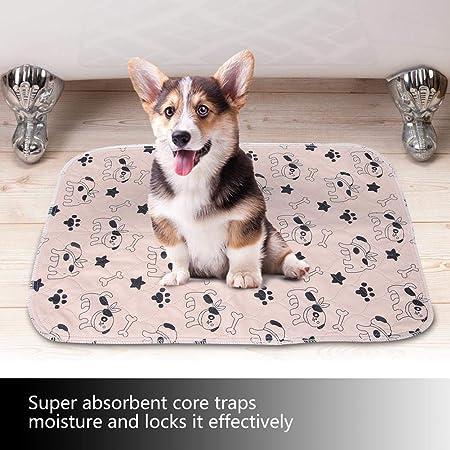 Smandy Pet Pee Pad, 3 Tamaños Reutilizable Impermeable Cachorro Perro Gato Pee Pads Cama Alfombra Lavable Absorbente Mascota Trainging Pads Orina de ...