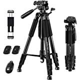"JOILCAN 65""Camera Tripod for Canon Nikon Lightweight Aluminum Travel DSLR Camera Stand 11 lbs Load with Universal Phone…"