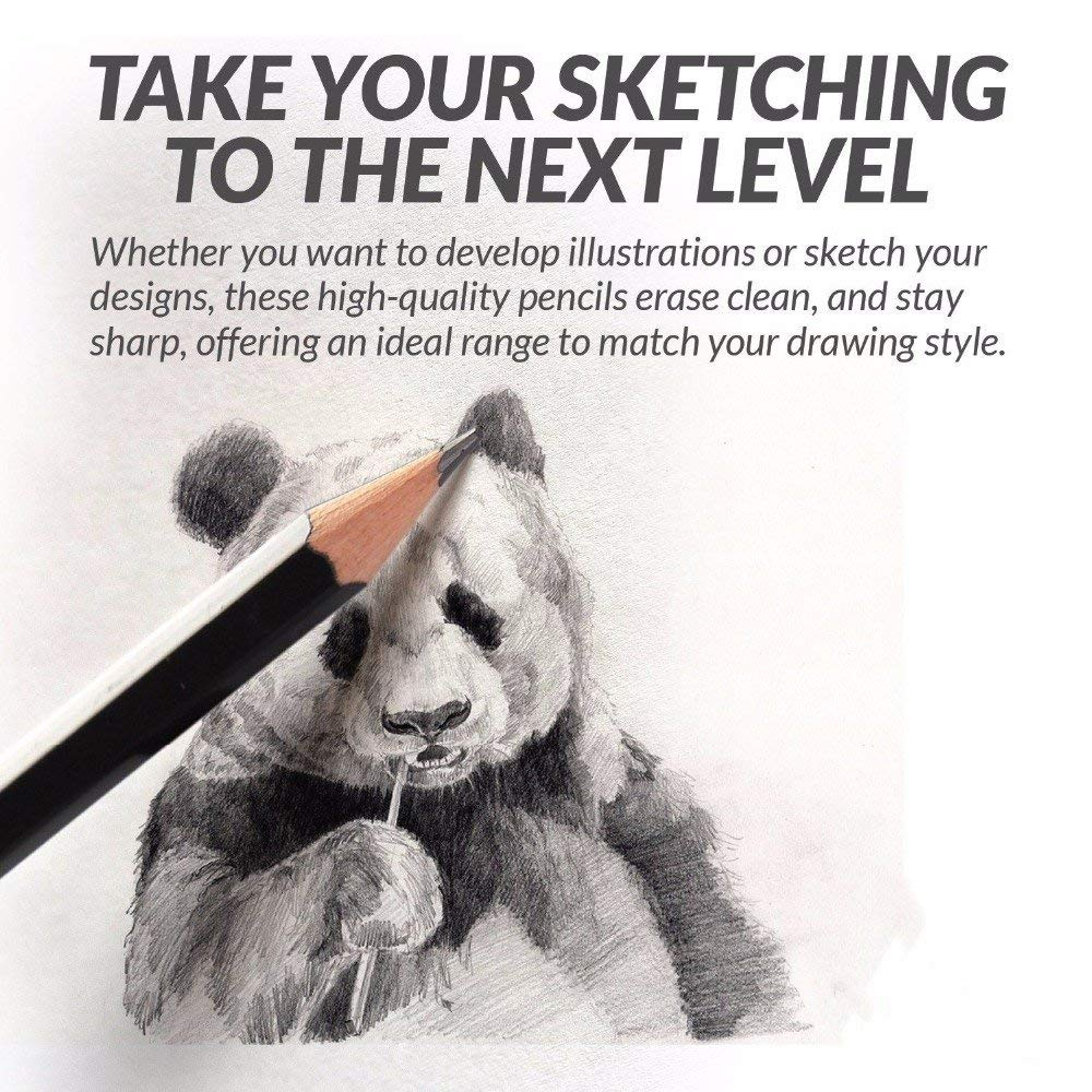 Pindia Sketching Charcoal Pencil Set - Pack of 12 (Multicolor)