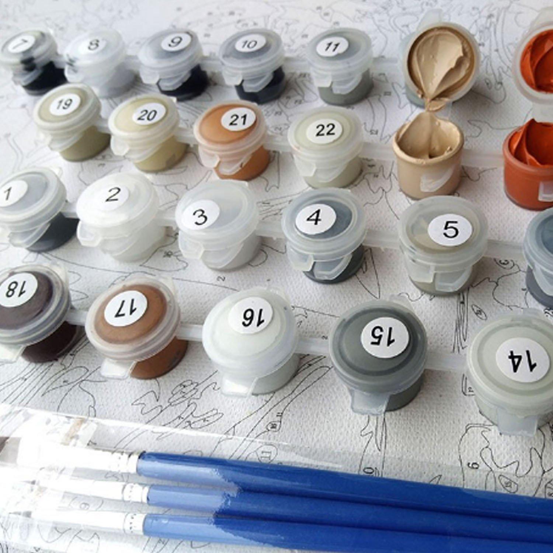 DIY Ölgemälde Malen Nach Anzahl Kits OHNE Rahmen, 16x20 Zoll Acryl ...