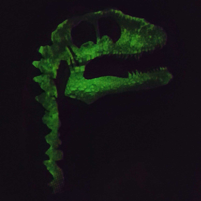 Jurassic World Pijama para Niños - Jurassic World - Brillan En La Oscuridad - 8 - 9 Años: Amazon.es: Ropa y accesorios
