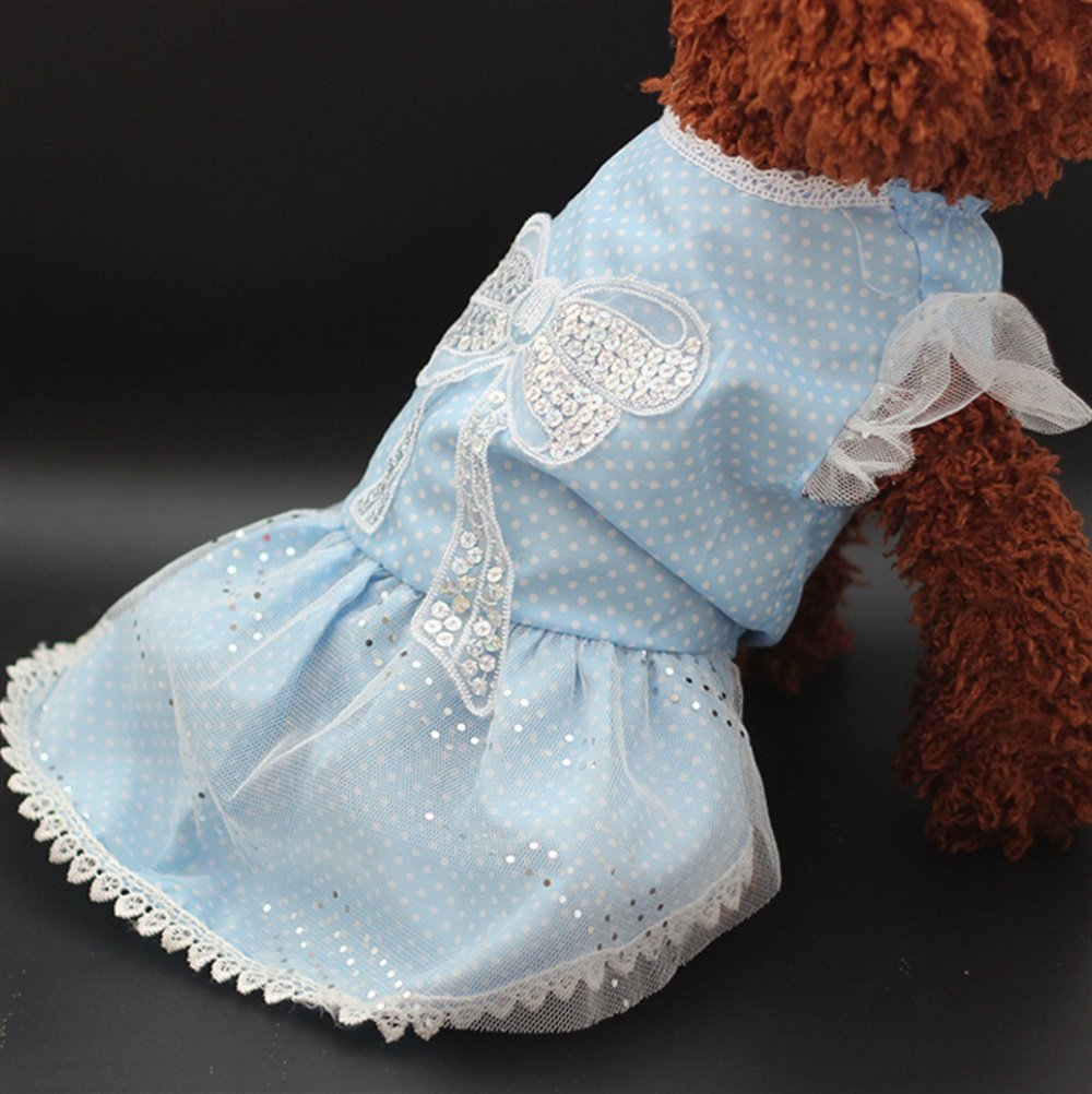 ZHJZ- Vestido para Gato con diseño de Lunares de Lazo, Color Azul, Talla 12, para Disfraz de Gato: Amazon.es: Productos para mascotas