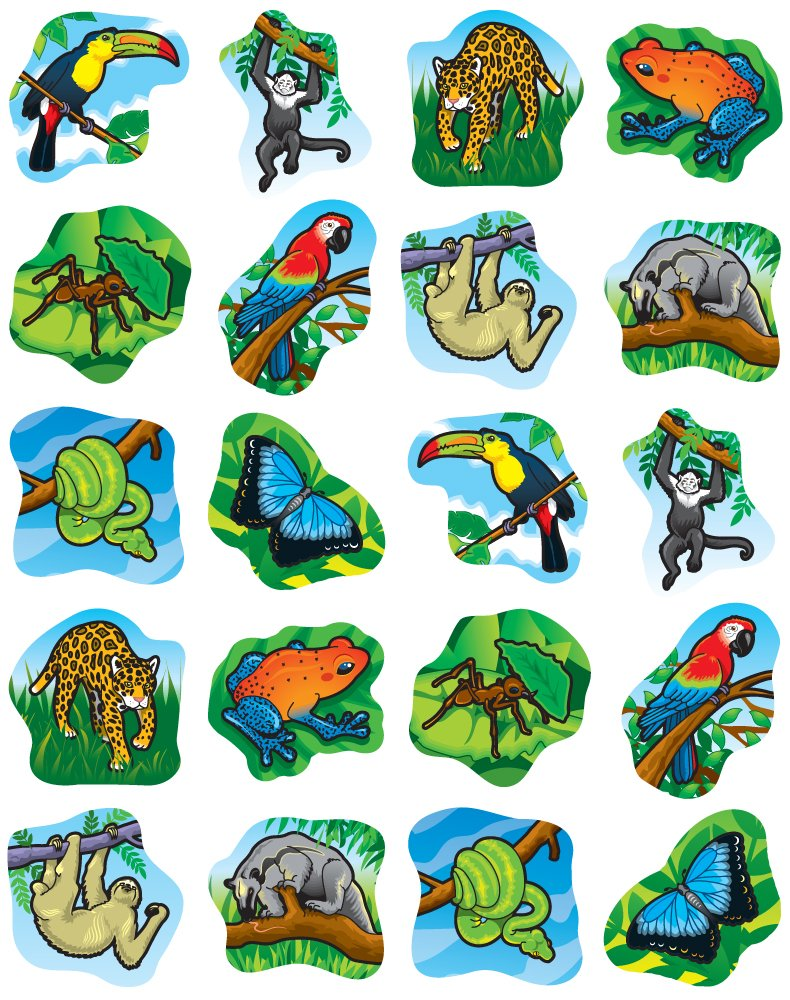 amazon com carson dellosa rainforest animals shape stickers 5267
