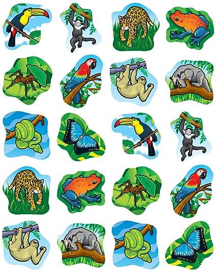 amazon com carson dellosa rainforest animals shape stickers 5267 rh amazon com rainforest animals clipart free Rainforest Animals Coloring Pages