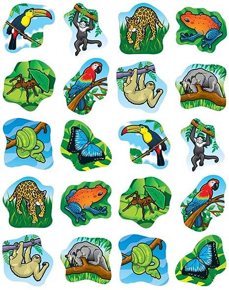 amazon rainforest plants collage. amazoncom carson dellosa rainforest animals shape stickers 5267 office products amazon plants collage