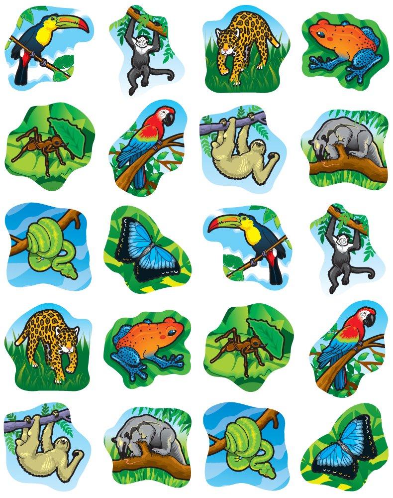 Rainforest Animals Shape Stickers: Realistic: Amazon.co.uk: Carson ...