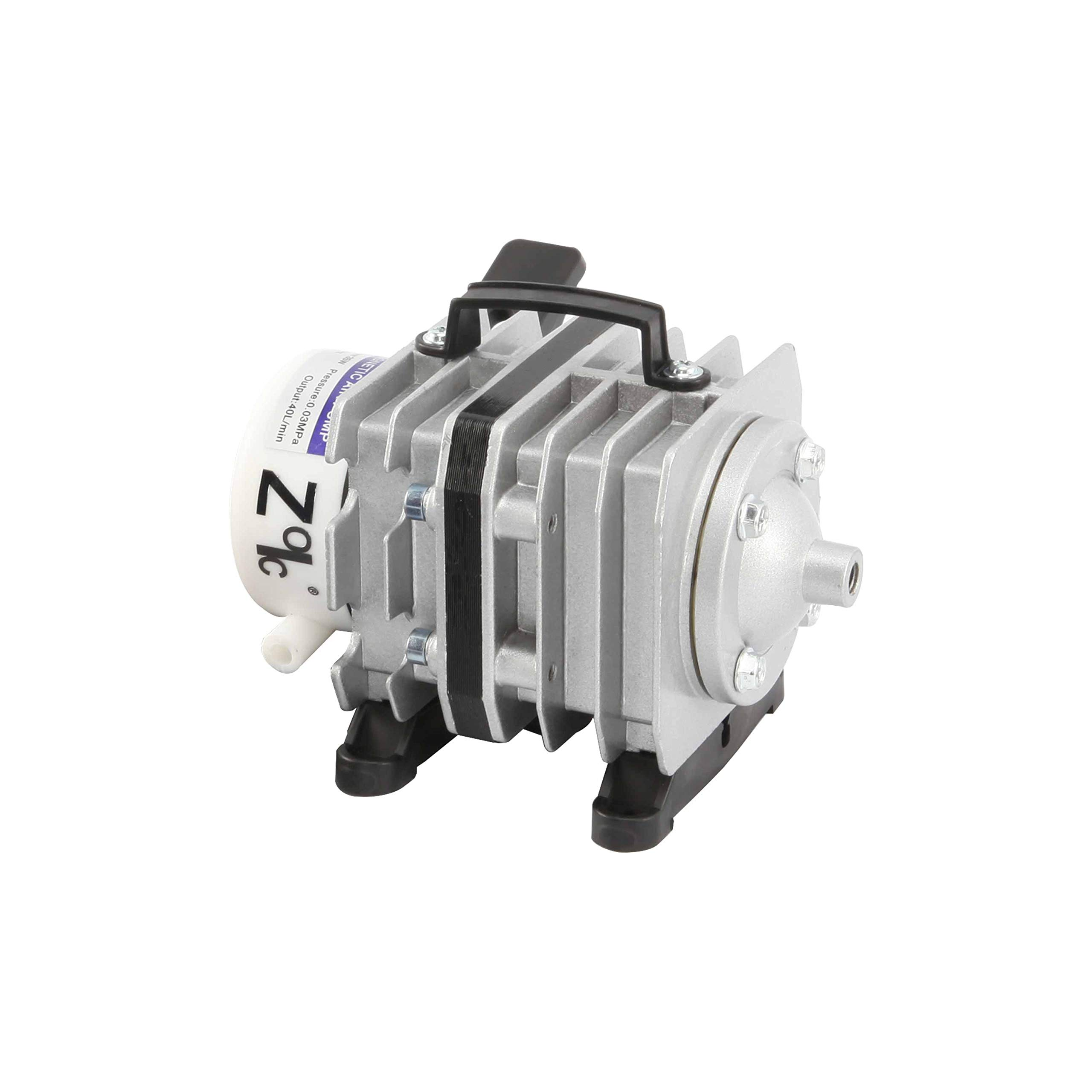 Pond Pump and Filter: Amazon.ca