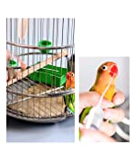Bonaweite 2Pack Reusable Young Birds Feeding