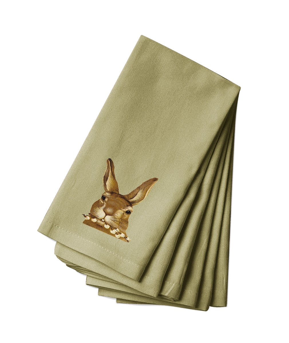 Style in Print Canvas Dinner Napkin Set Of 4 Bunny Eats Flower Pets Animals By