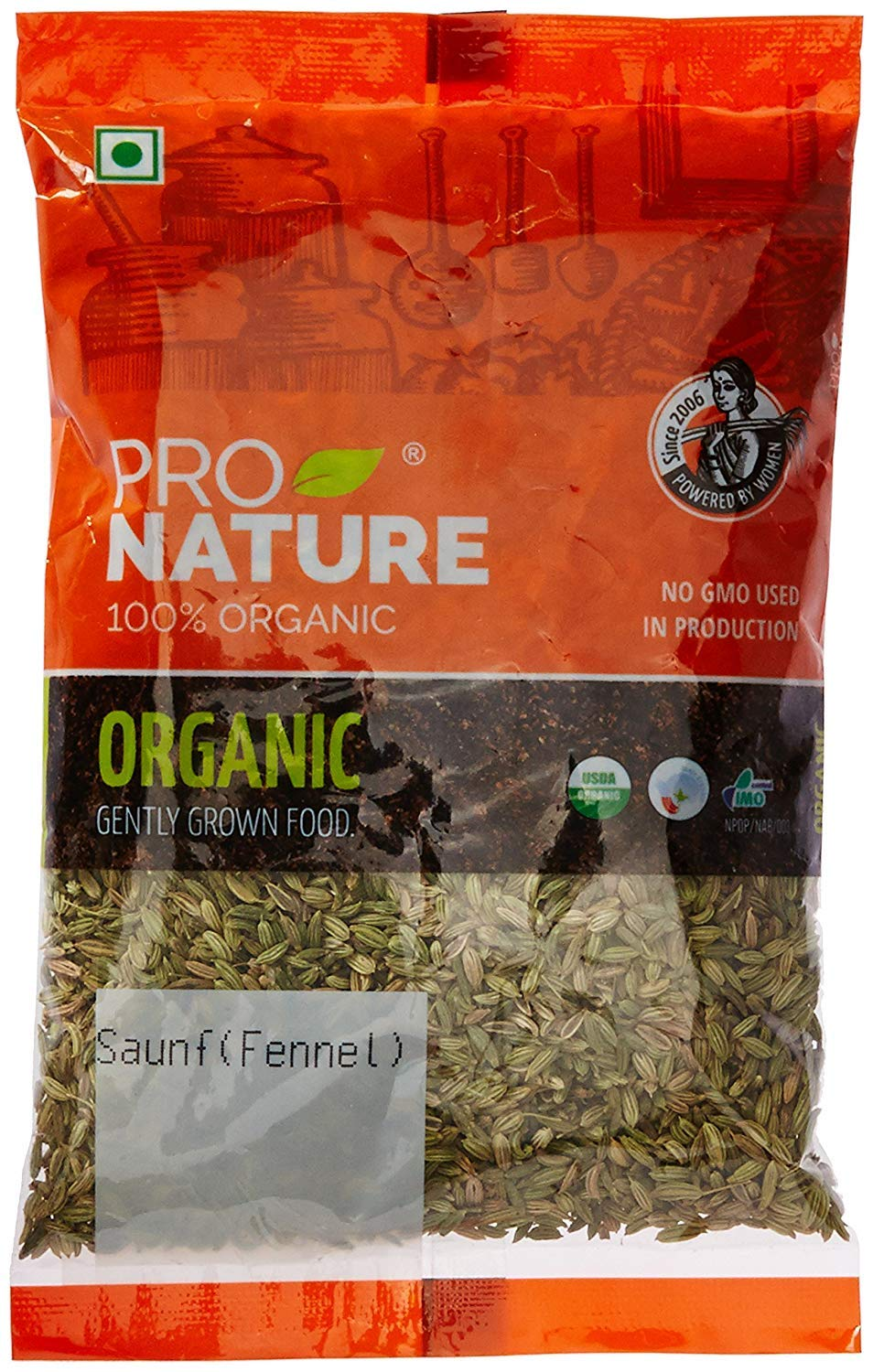 Pro Nature 100% Organic Saunf (Fennel) 100 g by Hindustan Mart (Image #1)