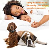 POP VIEW Bark Collar [2018 Version] No Bark Collar Dog Small Bark Collar Shock Collar with Beep Ultrasound Harmless Shock Rechargeable Anti Bark Control Device for Small Medium Large Dog