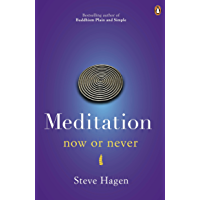 Meditation Now or Never (English Edition)
