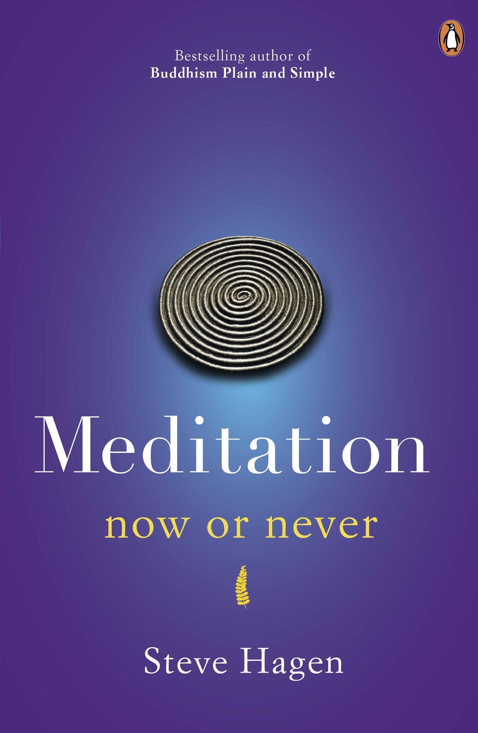 Meditation now or never amazon co uk steve hagen 9780718193041 books