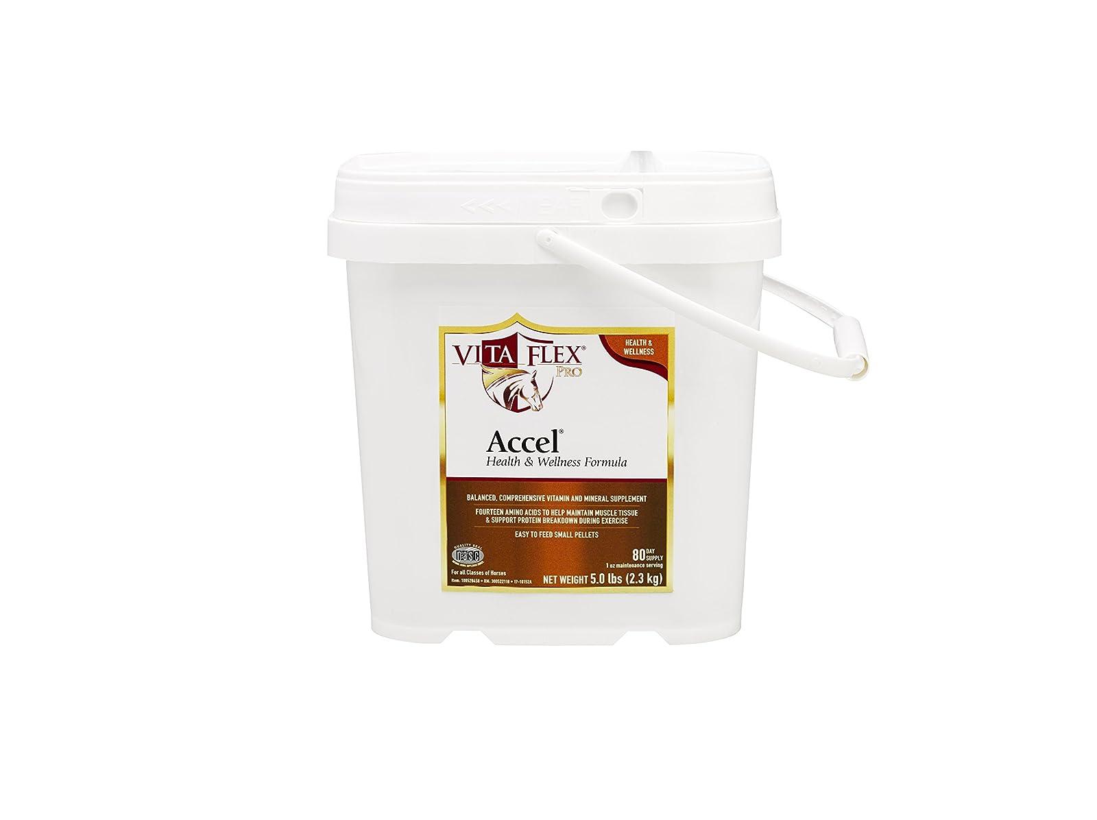 Vita Flex Pro Accel Health & Wellness Formula 100528458 - 2