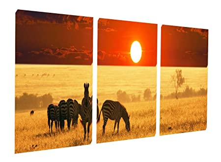 Gardenia Art – Harmonious Grassland Zebra and Sunset Scene Canvas Prints Wall Art Stretched and Framed Modern Decor Paintings Artwork for Living Room and Bedroom, 16×16 in, 3 pcs set