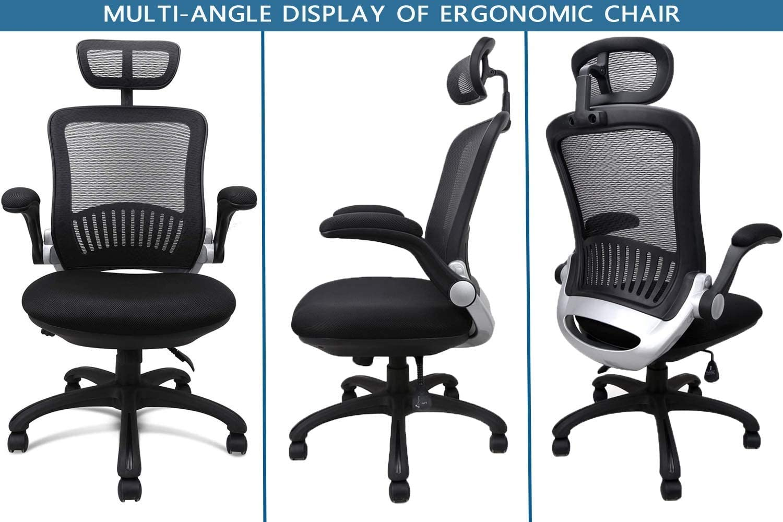 Ergousit Task Chair