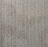 """Shaw Rigorous Carpet Tile-24""""x"""