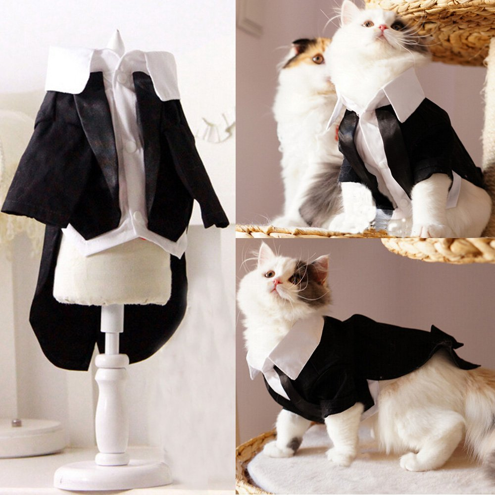 I'Pet® Handsome Prince Cat Bridegroom Wedding Tuxedo Faux Twinset Design Small Boy Dog Formal Attire Doggy Party Wear Puppy Birthday Outfit Doggie Photo Apparel with Buttons Holiday Fabric Clothes Halloween Classics Collection Costume (Black Tuxedo, X