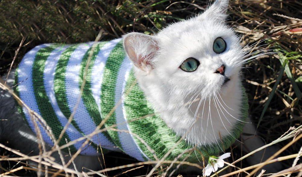 Suéter para gatos, para gatos, para invierno, mascotas, gatos, para disfraz de gato, muy elástico, cómodo para gatos pequeños, perros chihuahua Pug: Amazon.es: Productos para mascotas