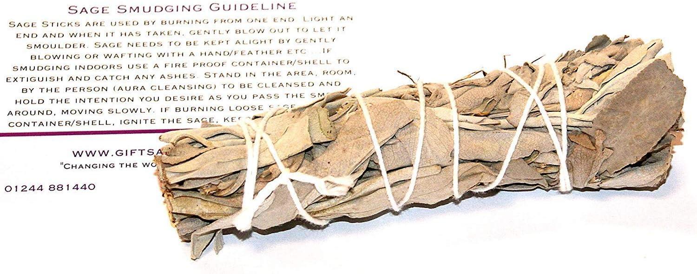 Gifts and Guidance Blanco Salvia 4