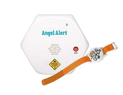 Amazon.com : Angel Alert Wireless Pool Guardian Alarm- GT ...