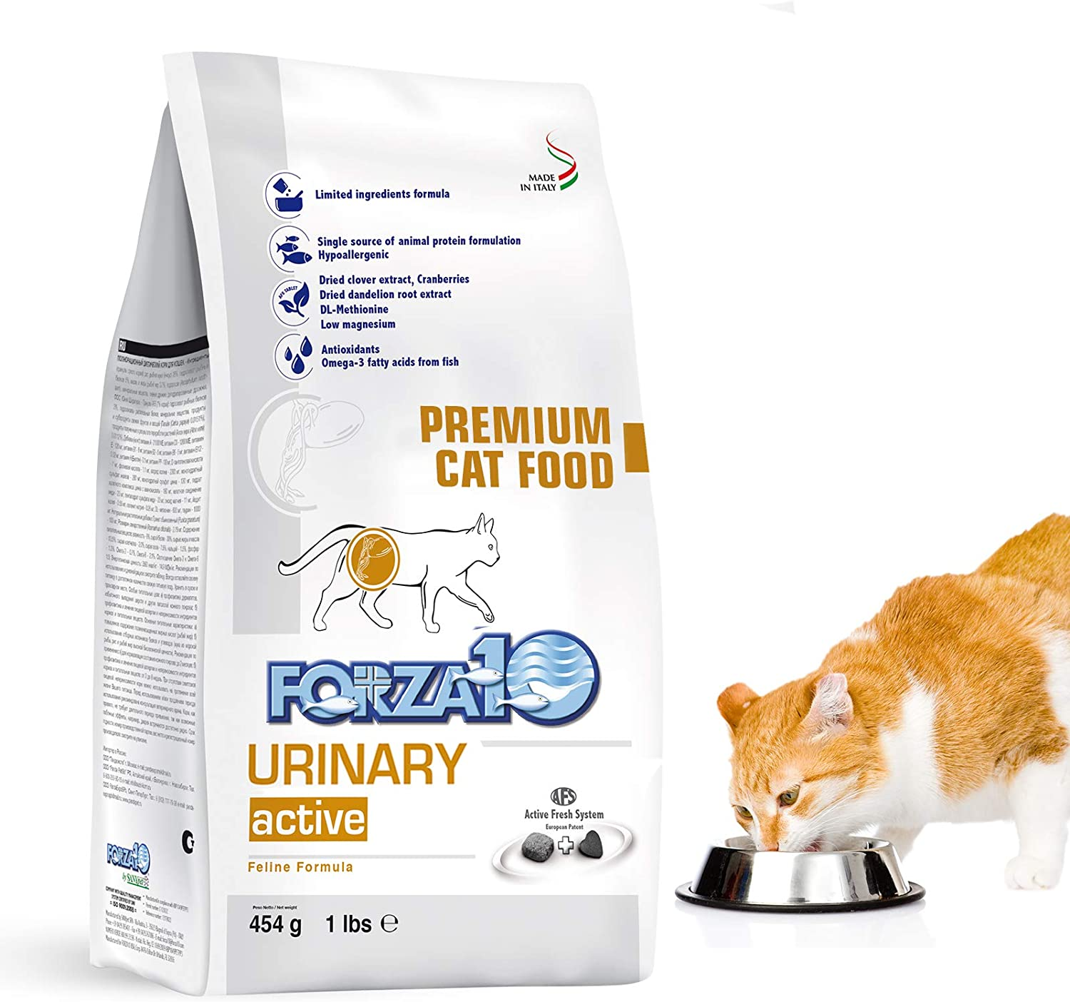 Forza10 Active Urinary Dry Cat Food, Urinary Tract Health Cat Food Dry Kibble Vet Approved Omega 3 Gluten Free, 1.0 Pound, Anchovy, Adult Cats