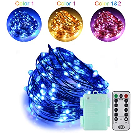 Ruichen Dimmable Battery Powered Led Fairy String Lights 33ft 100