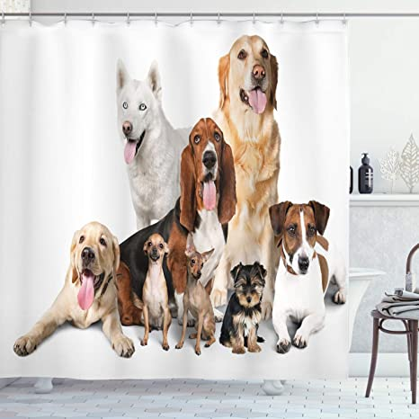Amazon Com Ambesonne Dog Lover Shower Curtain Group Of Dogs Posing For Photo Shoot Portrait Togetherness Companionship Print Cloth Fabric Bathroom Decor Set With Hooks 70 Long Brown Beige Home Kitchen