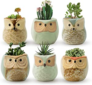 FairyLavie Succulent Pots, 2.5'' Owl Planter Owl Pot, Small Pots for Plants Cute Small Planter with Accessories, Great for Home Decor and Ideal Gift, Set of 6