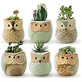 FairyLavie Succulent Pots, 2.5'' Owl Planter Owl Pot, Small Pots for Plants Cute Small Planter with Accessories, Great…