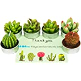 Cactus Tealight Candles, AMASKY Handmade Delicate Succulent Cactus Candles for Birthday Party Wedding Spa Home Decoration, 6 Pcs in Pack. (6)