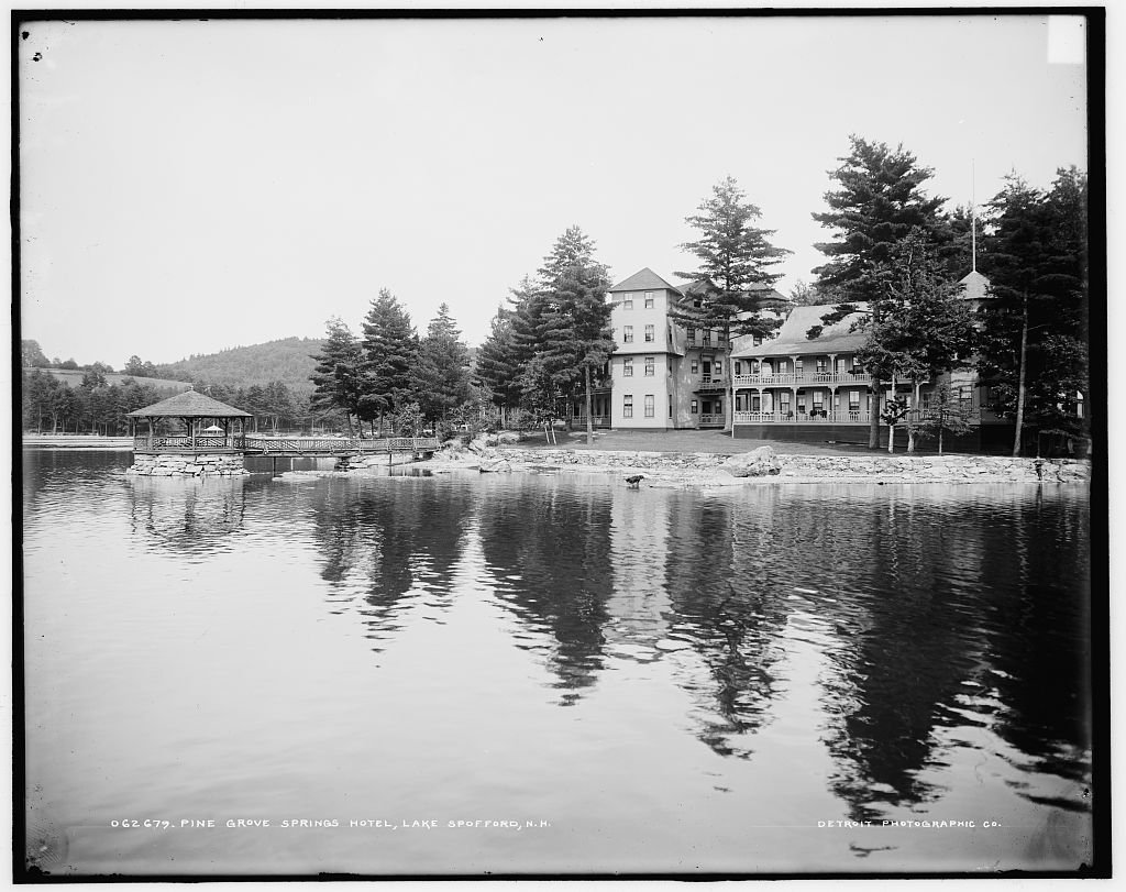 Vintography 8 x 10 Reprinted Old Photo Pine Grove Springs Hotel Lake Spofford N.H. 1903 Detriot Publishing co. 80a