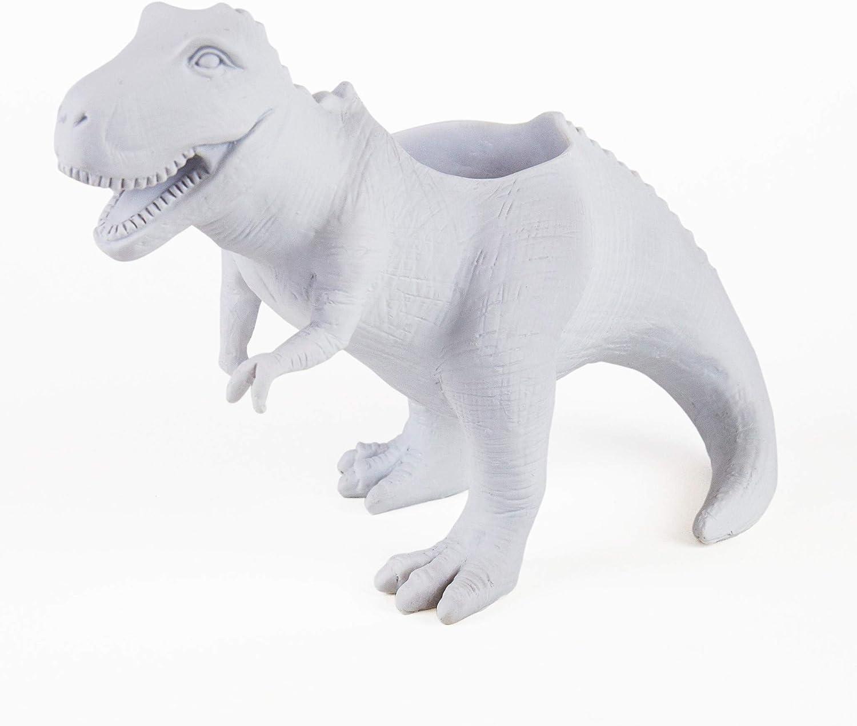 T-Rex Dinosaur Planter