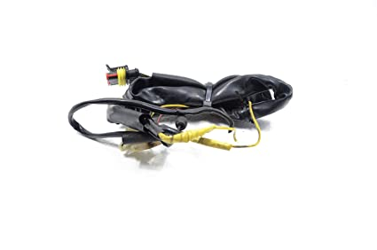 Excellent Amazon Com 05 Ducati Monster S2R 800 S4R 900 Tail Light Wiring Wiring Digital Resources Indicompassionincorg