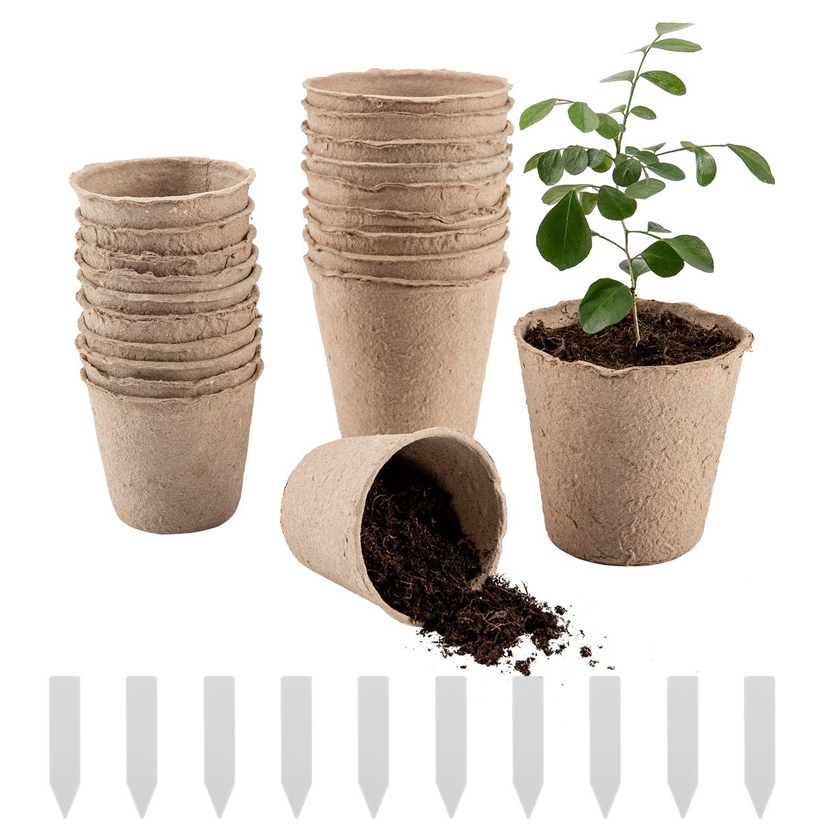Cosweet 50 Pcs Peat Pots, Plant Seedling Saplings & Herb Seed Starters Kit, Vegetable Tomato Seed Germination Trays, 100% Eco-Friendly and Biodegradable with Bonus 10 Plastic Plant Markers