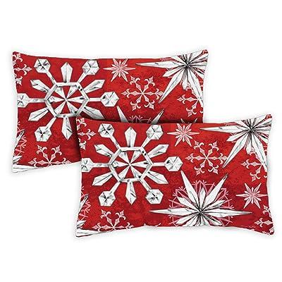 Toland Home Garden 731309 Snowflake Salutations 12 x 19 inch Indoor/Outdoor, Pillow with Insert (2-Pack) : Garden & Outdoor