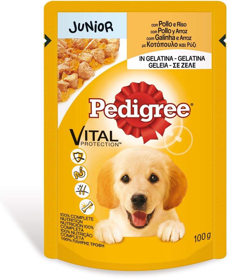 Bolsita para perros junior de pollo y arroz 100g | [Pack de 24]