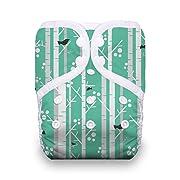 Thirsties Reusable Cloth Diaper, One Size Pocket Diaper, Snap Closure, Aspen Grove
