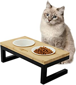 WANTRYAPET Premium Elevated Pet Feeder for Dog Cat, Bamboo Rasied Pet Bowls Include 2 Ceramic Bowls with Stong Stainless Steel Frame