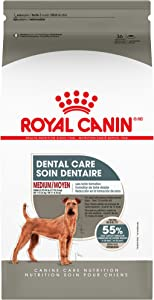 Royal Canin Dental Care Dry Food for Medium Dogs