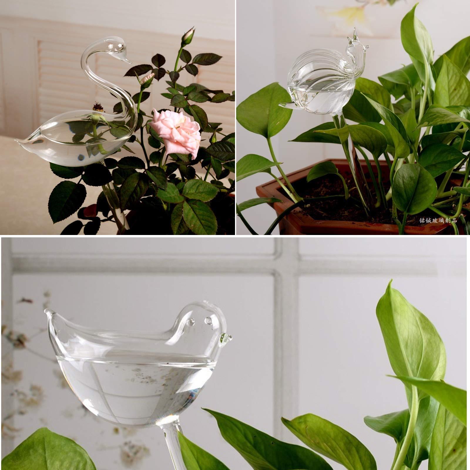 Asvert Self Watering Aqua Globes Hand-blown Mini Glass Automatic Plant Waterer, Bulbs, Bird Swan Snails Shape Decorative Design,Set of 3 by Asvert