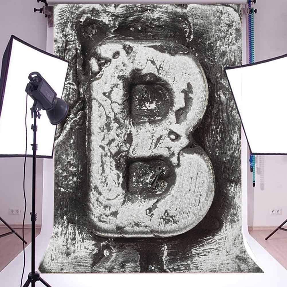 7x10 FT Letter B Vinyl Photography Backdrop,Steel Aged B with Toned Cracks and Distressed Effects Ceramic Inspired Print Background for Baby Birthday Party Wedding Studio Props Photography