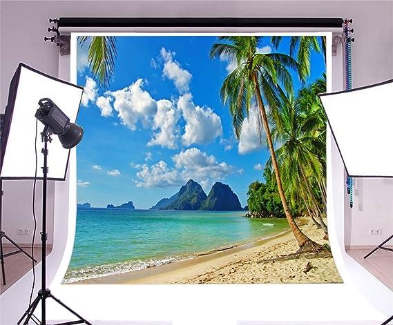 YongFoto 2,2x1,5m Vinyle Toile de Fond Plage Tableau Paysage Mer Ciel Bleu Nuages Blancs Palmier Montagne Fond Pour Photo Portrait Studio Photo Banner Video Hawaii Partie Photobooth Photographie Props