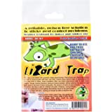 DPK Lizard Trap, 1ct