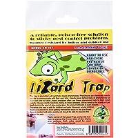 DPK Lizard Trap, 1ct