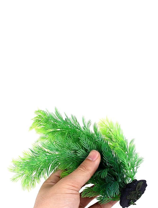 Amazon.com : eDealMax Plástico acuario Plant Simulation 7 pulgadas 12 piezas multicolores : Pet Supplies