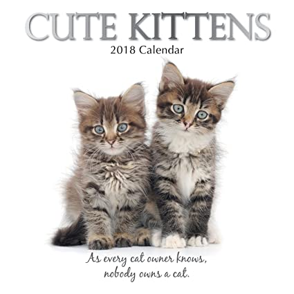 2018 Cute gatitos calendario – calendario de pared en Ingles 30 cm x 30 cm con
