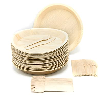 Eco-Friendly Disposable Dinnerware Set of 75 Party Supplies Large 10u0026quot; Round Palm  sc 1 st  Amazon.com : recycled disposable plates - pezcame.com