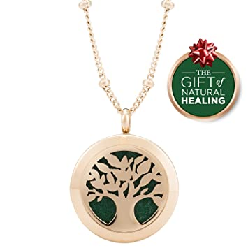 Amazon rose gold aromatherapy pendant for essential oils rose gold aromatherapy pendant for essential oils aloadofball Images