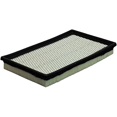 Luber-finer AF293 Heavy Duty Air Filter: Automotive